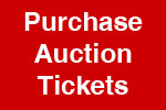 auctiontickets